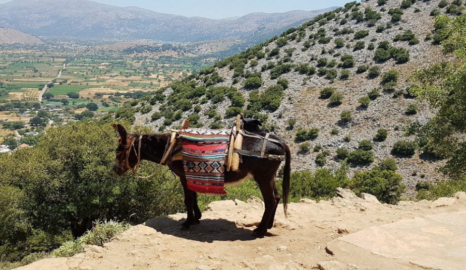 Tour to Cave of Zeus at East Crete, the Palace of Knossos & Traditional Villages